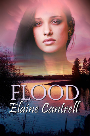 Blog Tour: Flood by Elaine Cantrell (Excerpt & Giveaway)